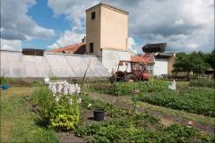 orangeriet-20140717-042