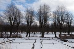 orangeriet-20160308-012