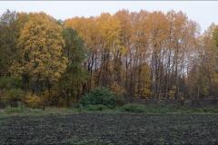 orangeriet-20181016-005