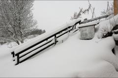 orangeriet-20121219-001