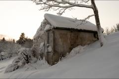 orangeriet-20121223-004